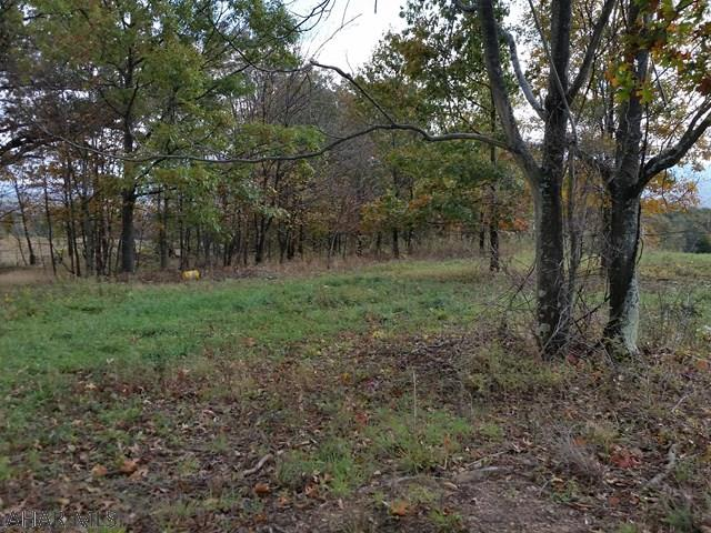 Land, For sale, Off Berly Road , Listing ID 1100, Huntingdon, Huntingdon, Pennsylvania, United States, 16652,