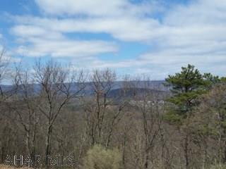 Land, For sale,  Piney Ridge Road, Listing ID 1127, Huntingdon, Huntingdon, Pennsylvania, United States, 16652,