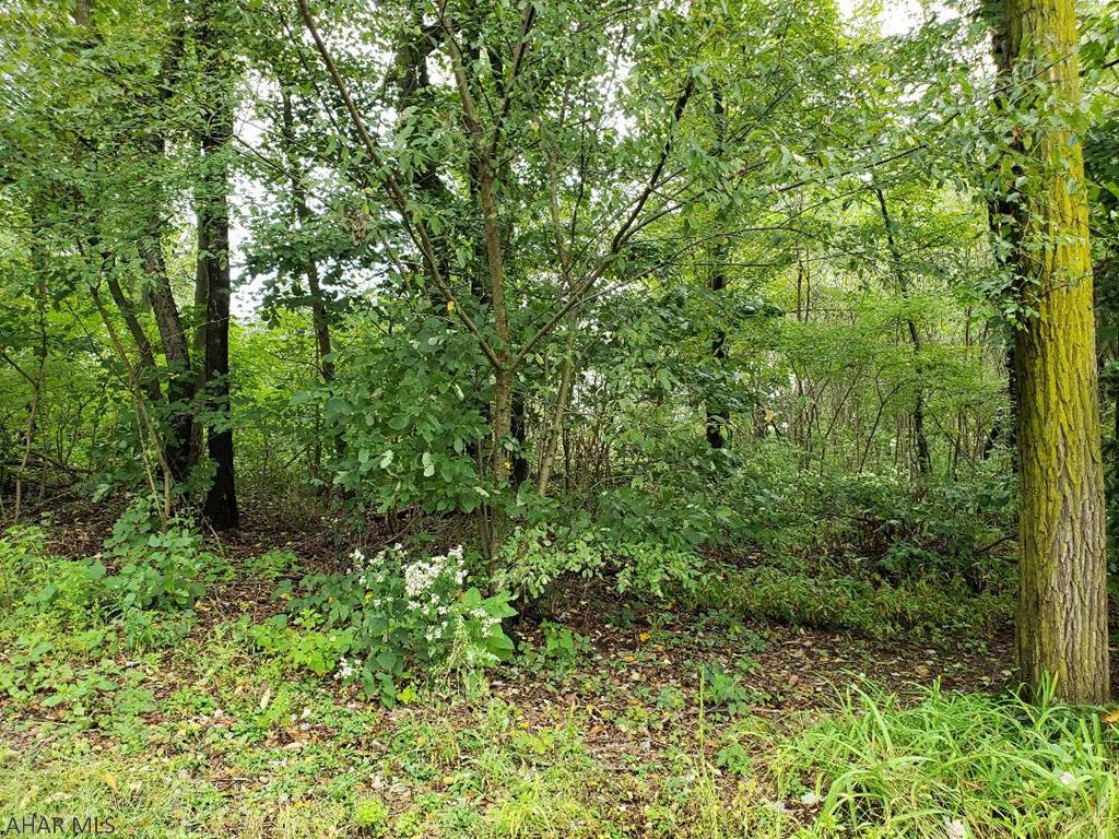 Lot 34 Fair Valley Road, Martinsburg, Blair, Pennsylvania, United States 16662, ,Land,For sale,Fair Valley Road ,1143