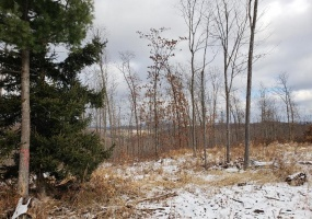 Lot 2 Luke Smith Dr, Duncansville, Blair, Pennsylvania, United States 16635, ,Land,For sale,Luke Smith Dr ,1156