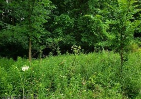 Lot 33 Granada Way, Altoona, Blair, Pennsylvania, United States 16601, ,Land,For sale,Granada Way,1211