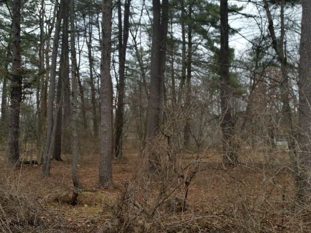 Land, For sale, Orbison Grove, Listing ID 1011, Huntingdon, Huntingdon, Pennsylvania, United States, 16652,